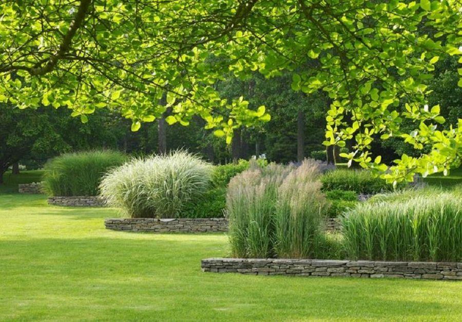 Dise o de jardines y espacios exteriores otros cursos for Diseno de jardines uruguay